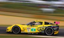 Don't Miss Last ALMS Petit Le Mans