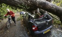 Bethany Freeman, Donal Drohan ID'ed as Victims of Falling Trees in UK Storm