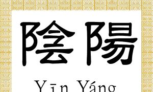 Chinese Characters: Yin, Yang (陰, 陽)