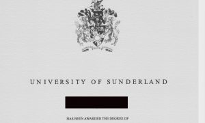 Fake Diplomas a Mouse Click Away in China