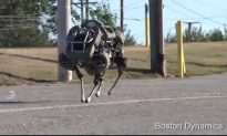 Killer Robots from DARPA (Video)
