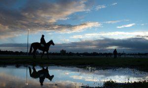 Melbourne Cup: Much More Than a Few Short Furlongs