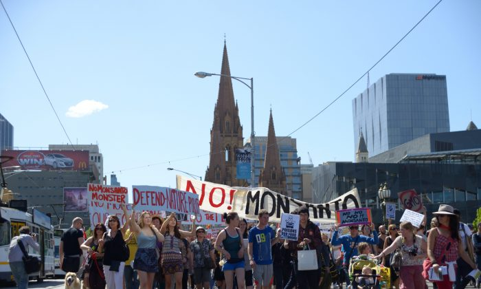The March Against Monsanto movement held 500 marches in 57 countries, including 14 cities across Australia, to protest the impacts of GMOs and agricultural biotech giant Monsanto on the global food chain on October 12. The marches were organised to coincide with the United Nations' World Hunger Day on Oct. 16. (Win Naing/Epoch Times)
