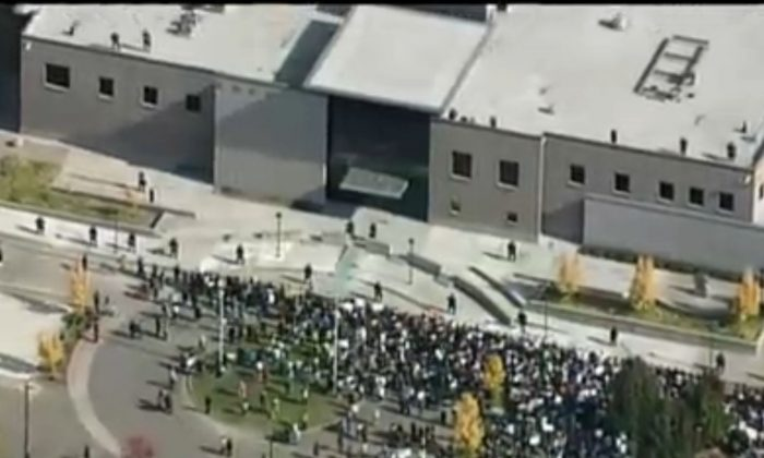 Protesters are seen marching in Santa Rosa, Calif., on Tuesday. (NBC Screenshot)