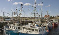 Canada at Risk of Losing World Leader Status on Ocean Science