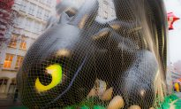 Before Thanksgiving Showtime, a Yearlong Journey for Parade Balloons