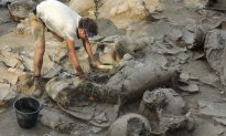 3,700-Year-Old Wine Cellar Discovered in Israel