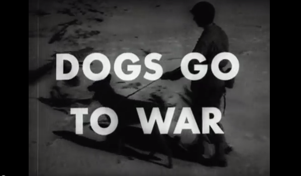 """Screenshot from """"The Use of War Dogs"""" by the Department of Defense, 1943. (National Archives)"""