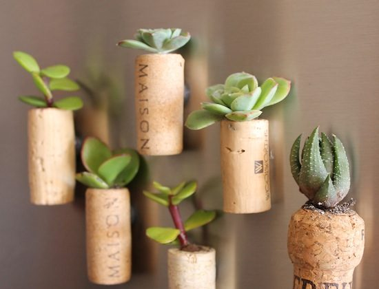 Cork planter magnets. (Courtesy of Upcycle That)