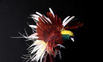 Astounding Paper Art: Life-Like Birds, Ghostly Castles, More