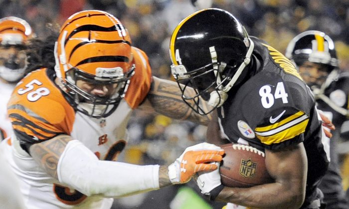 Pittsburgh Steelers wide receiver Antonio Brown (84) makes a touchdown catch in front of Cincinnati Bengals middle linebacker Rey Maualuga (58) in the first quarter of an NFL football game in Pittsburgh on Dec. 15, 2013. (Don Wright/AP Photo)