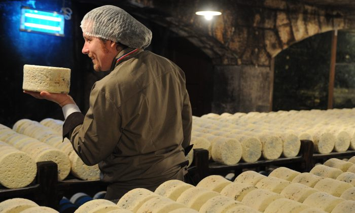 A master cheese maker controls the quality of cheeses at the Roquefort Societe company on May 16, 2013 in a cellar at Roquefort-sur-Soulzon, southern France. ((Photo credit should read PASCAL PAVANI/AFP/Getty Images)