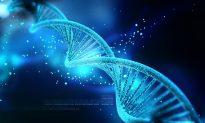 DNA Nanotechnology the Future of Modern Medicine?