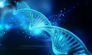 DNA Nanotechnology the Future of Modern Medicine?