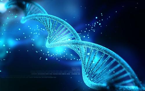 DNA (Shutterstock*)