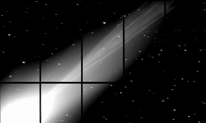Comet Lovejoy. (NAOJ)