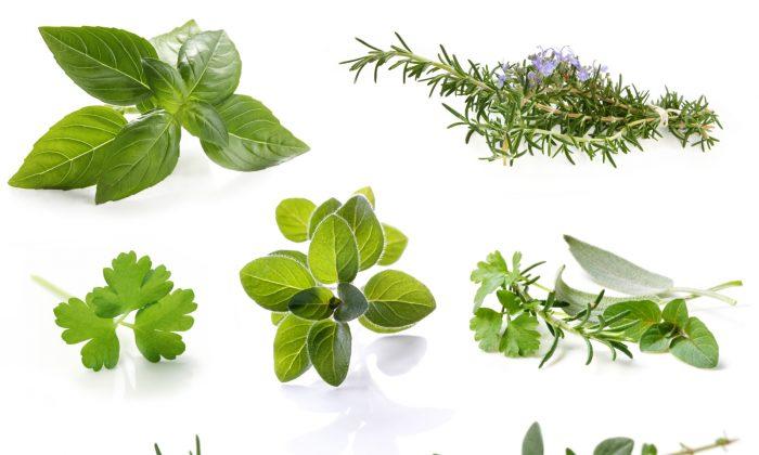 Herbs like basil, oregano, parsley, fenugreek, and thyme add flavor to food and help regulate blood sugar. ( Robyn Mackenzie/photos.com)