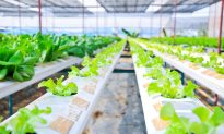 Space Exploration Can Drive the Next Agricultural Revolution