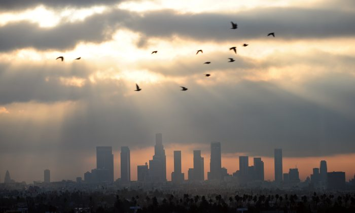 Birds fly across the sky at daybreak over the downtown Los Angeles skyline Dec. 2011. Los Angeles has the worst ground level ozone pollution in the country, according to a report by the American Lung Association. New York came in 17 on the list. (Frederic J. Brown/AFP/Getty Images)