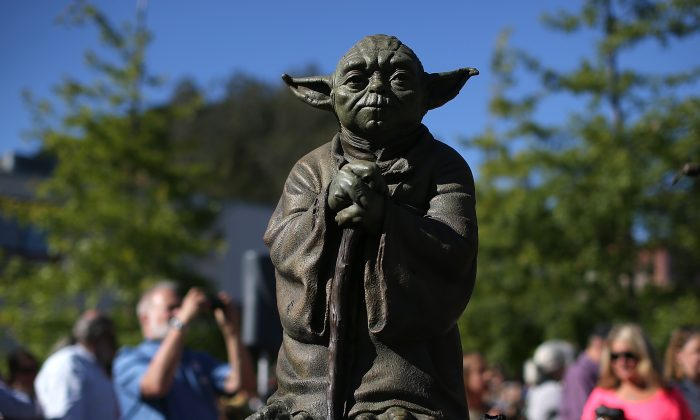 A bronze statue of 'Star Wars' character Yoda is on display after being unveiled at the new Imagination Park on June 20, 2013 in San Anselmo, California. Bronze statues of the 'Star Wars' character Yoda and Indiana Jones were unveiled at the new 8,700 square foot Imagination Park in downtown San Anselmo that was donated by 'Star Wars' creator and San Anselmo resident George Lucas. Lucas donated the property, paid for park plans and demolition of the existing structures. (Photo by Justin Sullivan/Getty Images)