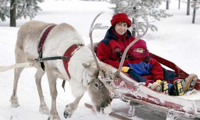 British tourists Athene, 4 years-old, and her mother Barbara taking a reindeer sleigh ride in Rovaniemi, Finnish Lapland. (JUSSI NUKARI/AFP/Getty Images)