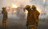 Australia: Bushfire Threat to Increase For Outer City Suburbs