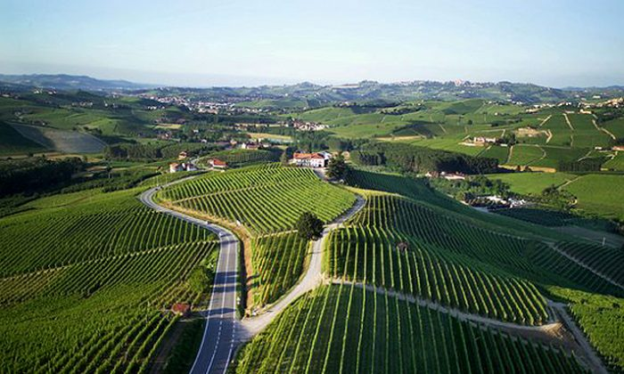 The 84 hectares of Cannubi Hill vineyards are located just north of the village of Barolo in Italy. (Manos Angelakis)
