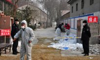 UN Warns of Bird Flu Increase in China