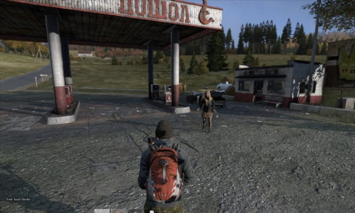 Screenshot from Day Z Standalone