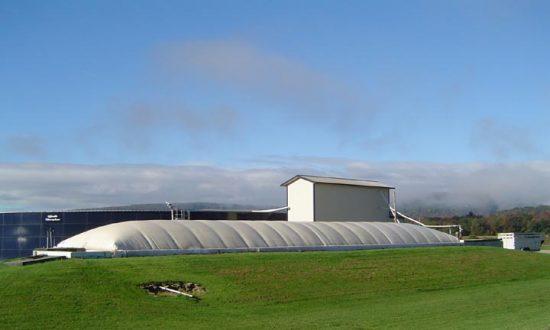 Cow Manure Powers Dairy Farms