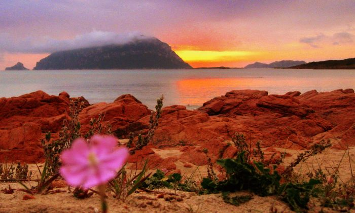 Red rocks and soil are typical of several Sardinian areas, especially in the North. The contrast between their vivid color and the blue-sky sea create a landscape of rare beauty.  Giovanni Manca