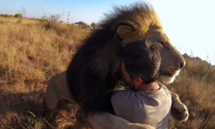 Kevin Richardson, a zoologist hugging a lion. (Scheenshot youtube.com)