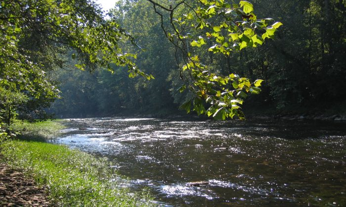 A file photo of the Elk River in West Virginia. (Craig Stihler, WVDNR)