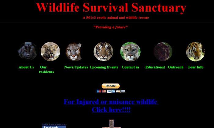 A screenshot shows the Survival Outreach Sanctuary website.