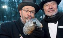 Groundhog Day 2014 Special Coverage: Living the Dream in Punxsutawney