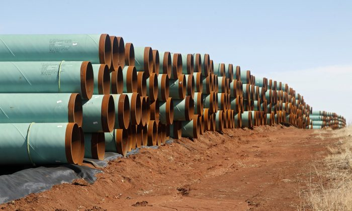 Miles of pipe ready to become part of the Keystone Pipeline are stacked in a field near Ripley, Okla, Feb 1, 2012. Oil wealth can benefit Canada's economy widely if managed well, says economist Alan Gelb. (AP Photo/Sue Ogrocki)