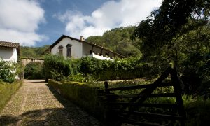 Mexico and Tequila: A Great Mix at San Sebastian del Oeste