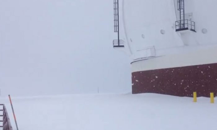 A screenshot of a YouTube video shows snow hitting near Mauna Loa this year.