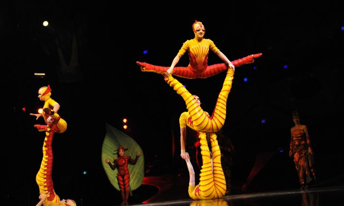 Cirque du Soleil acrobats wearing ant costumes perform at the Big Top Tent in Sydney, September 2012. The nonverbal communication between acrobats is a form of Qi. (ROMEO GACAD/AFP/GettyImages)