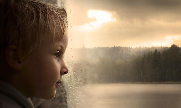 """After Rain."" (Elena Shumilova)"
