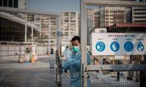Bird Flu Reappears in China, Mutations Feared