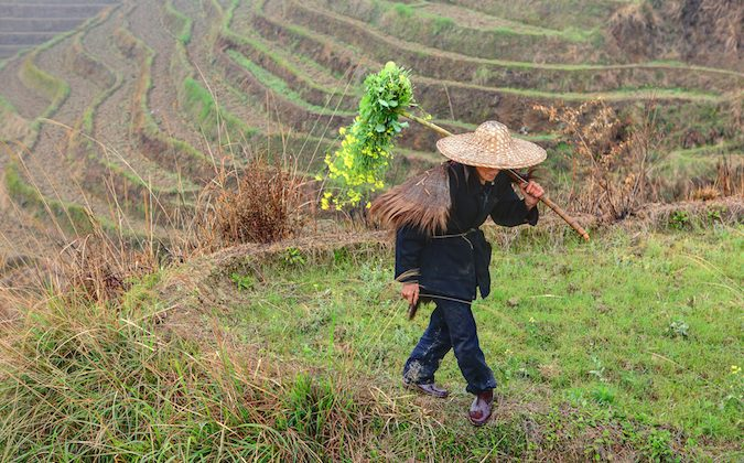Chinese farmer at work in Southwestern China (Chinese Farmer Image via Shutterstock*)