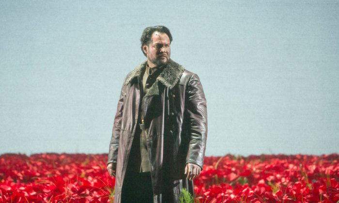 Prince Igor in the field of red poppies (photo by Cory Weaver)