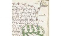 Have Botanists Unlocked the Secret of the Mysterious Voynich Manuscript?