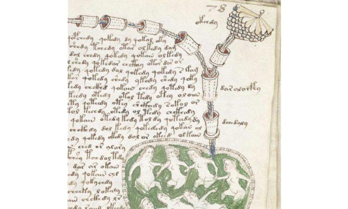 Voynich Manuscript excerpt (Wikimedia Commons)