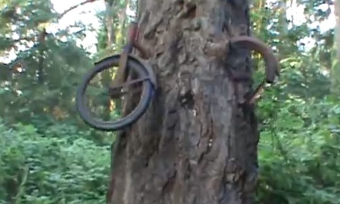 "A screenshot of a YouTube video from user "" zollna"" shows the bike."