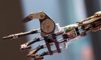 Bionic Hand Able to Feel Objects