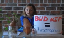 What Are We Putting in Our Food? This 9-Year-Old Girl's Simple Science Experiment Will Shock You