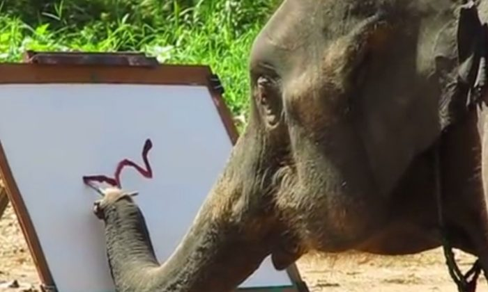 A YouTube screenshot shows the painting elephant.