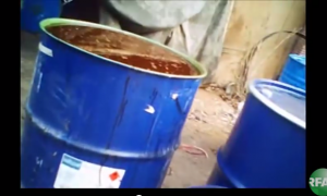 Cooking Oil Recycled From Sewers—It's as Gross as It Sounds and More Common Than You'd Think